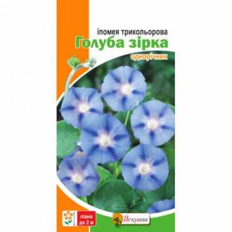 Ипомея Голубая звезда Яскрава рисунок 6