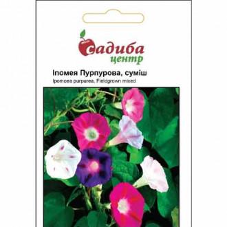 Ипомея Пурпурная, смесь окрасок Садыба центр рисунок 2