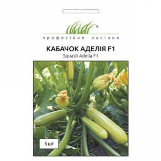Кабачок Аделія F1 Професійне насіння зображення 3