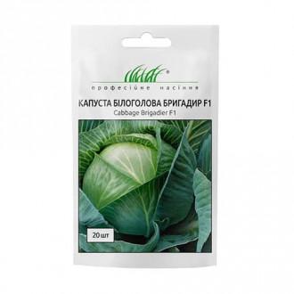 Капуста белокочанная Бригадир F1 Профессиональные семена рисунок 8