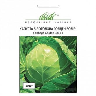 Капуста білокачанна Голден Бол F1 Професійне насіння зображення 3