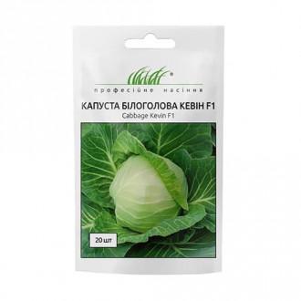 Капуста білокачанна Кевін F1 Професійне насіння зображення 3