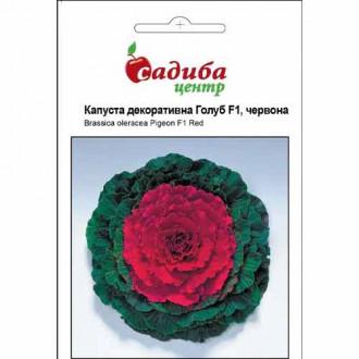 Капуста декоративна Голуб червона F1 Садиба центр зображення 1
