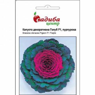 Капуста декоративна Голуб пурпурова F1 Садиба центр зображення 4