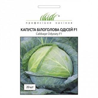 Капуста белокочанная Одиссей F1 Профессиональные семена рисунок 1
