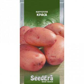 Картопля Краса Seedera зображення 4