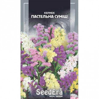Кермек Пастельний, суміш забарвлень Seedera зображення 6