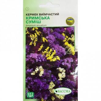 Кермек Крымская смесь, смесь окрасок Seedera рисунок 1