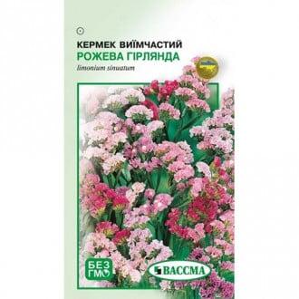 Кермек Рожева Гірлянда Seedera зображення 4