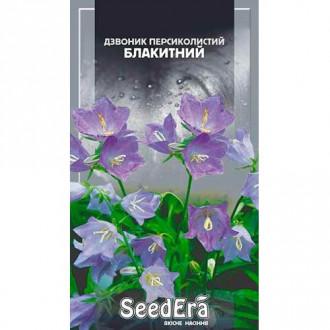 Дзвоник персиколистий блакитний Seedera зображення 5