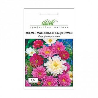 Космея Сенсация, смесь окрасок Профессиональные семена рисунок 2