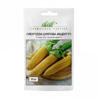 Кукурудза Акцент F1 Професійне насіння зображення 3