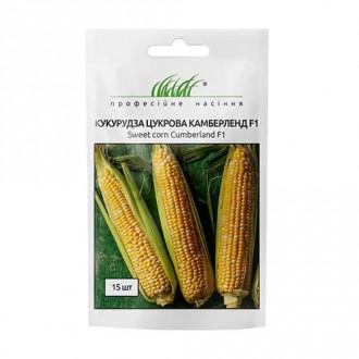 Кукуруза Камберленд F1 Профессиональные семена рисунок 5