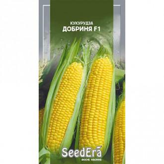 Кукуруза Добрыня F1 Seedera рисунок 3