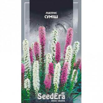 Ліатріс, суміш забарвлень Seedera зображення 1