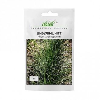Цибуля на зелень Шнітт Професійне насіння зображення 4