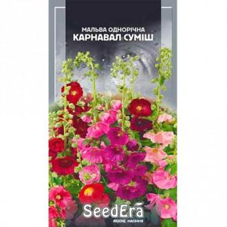 Мальва Карнавал, смесь окрасок Seedera рисунок 5
