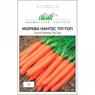 Морква Нантес Тіп-Топ Професійне насіння зображення 2