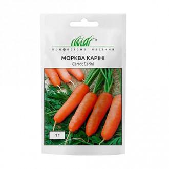Морква Каріні Професійне насіння зображення 7
