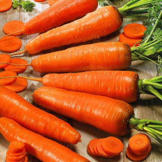 Морковь Коралл Seedera рисунок 4