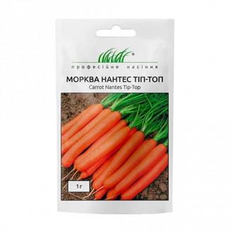 Морковь Нантес Тип-Топ Профессиональные семена рисунок 7