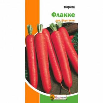 Морковь Флакке Яскрава рисунок 3
