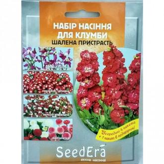 Набір насіння квітів Шалена пристрасть з 5 упаковок, суміш забарвлень Seedera зображення 7
