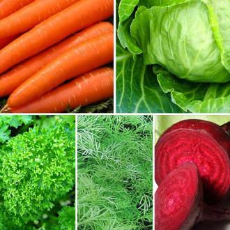 Набір насіння для борщу з 5 упаковок, суміш сортів Seedera зображення 6