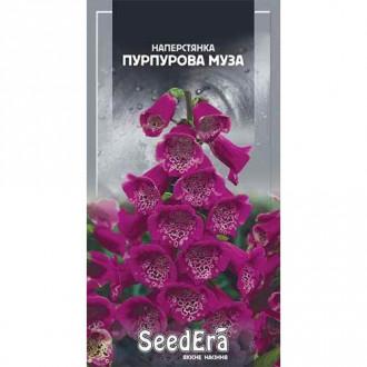 Наперстянка Пурпурная Муза Seedera рисунок 3