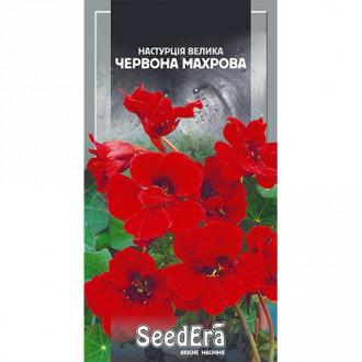 Настурция махровая красная Seedera рисунок 2