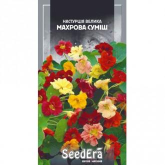 Настурция махровая, смесь окрасок Seedera рисунок 1