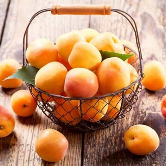 Персик-абрикос Медовый месяц рисунок 1