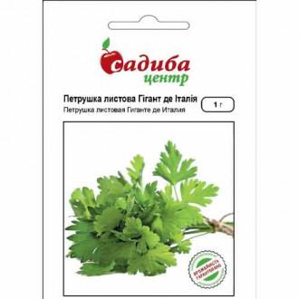 Петрушка листова Гігант де Італія Садиба центр зображення 2