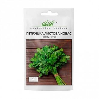 Петрушка листова Новас Професійне насіння зображення 6