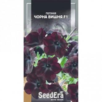 Петуния Черная вишня F1 Seedera рисунок 3