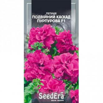 Петуния Двойной Каскад пурпурная F1 Seedera рисунок 3