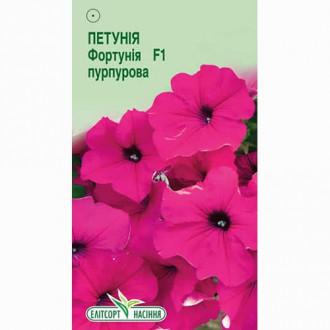 Петунія Фортунія пурпурова F1 Елітсорт зображення 4