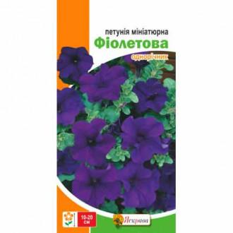 Петунія мініатюрна фіолетова Яскрава зображення 6