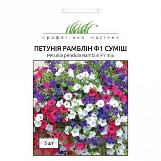 Петунія Рамблін F1, суміш забарвлень Професійне насіння зображення 3