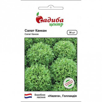 Салат листовой Канкан Садыба центр рисунок 3