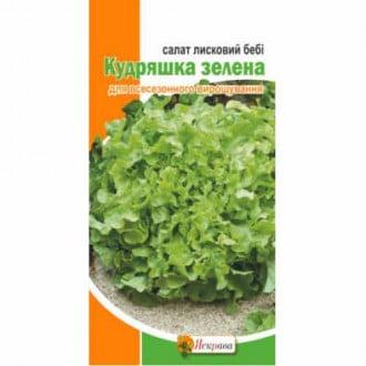 Салат листовий Бебі Кудряшка зелена Яскрава зображення 2