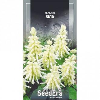 Сальвия блестящая белая Seedera рисунок 1