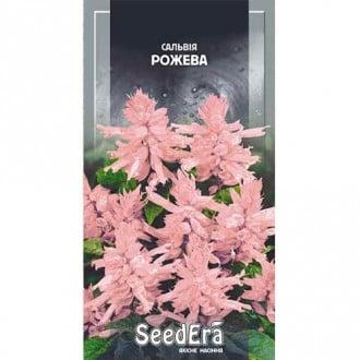 Сальвия блестящая розовая Seedera рисунок 8