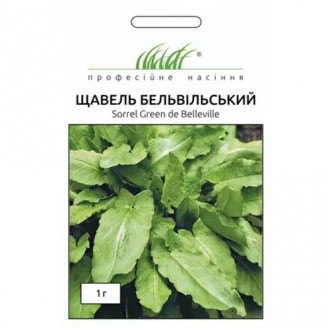 Щавель Бельвільський Професійне насіння зображення 2