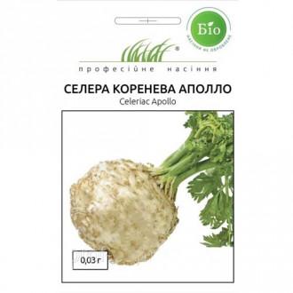 Селера коренева Аполло Професійне насіння зображення 2