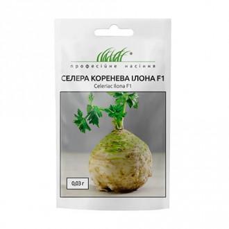 Селера коренева Ілона F1 Професійне насіння зображення 8