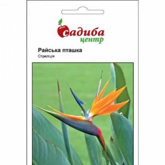 Стреліція королівська Райська пташка Садиба центр зображення 1