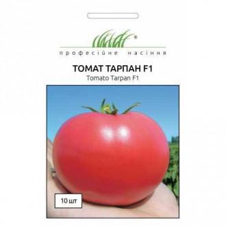 Томат Тарпан розовый F1 Профессиональные семена рисунок 5
