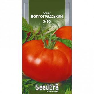 Томат Волгоградский 5/95 Seedera рисунок 4