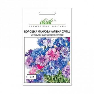 Василек Волшебный, смесь окрасок Профессиональные семена рисунок 2